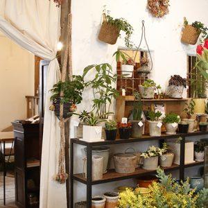 ギャラリーカフェにシェアスペースも!西荻窪で見つけた新しい形のカフェ4軒