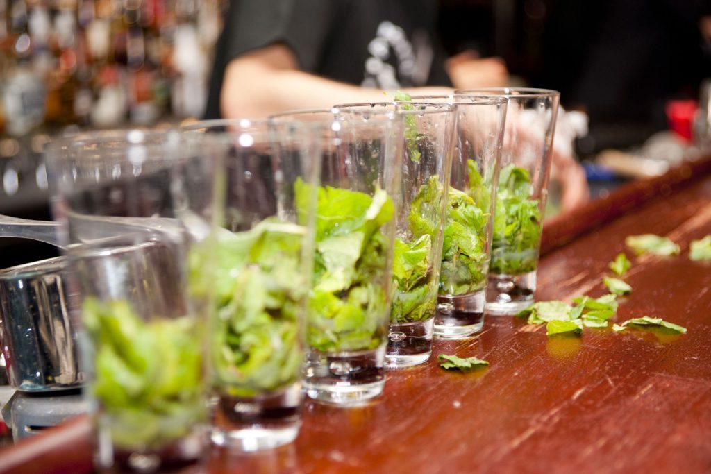 5113664 - highball glasses with mint leaves - preparing mojitas