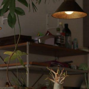 京都の街中で出逢ったガレット&クレープの専門店が素敵すぎる!〈neuf creperie(ヌフ クレープリー)〉〜カフェノハナシin KYOTO vol.3〜