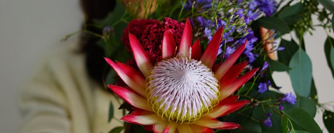 個性的で力強い美しさ!南アフリカ産「プロテア」は一輪でも素敵に飾れます。