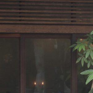 ふと立ち寄ってみたところ、その居心地よさについつい長居しちゃう憩いの場。〈鳥の木珈琲〉~カフェノハナシin KYOTO vol.5~