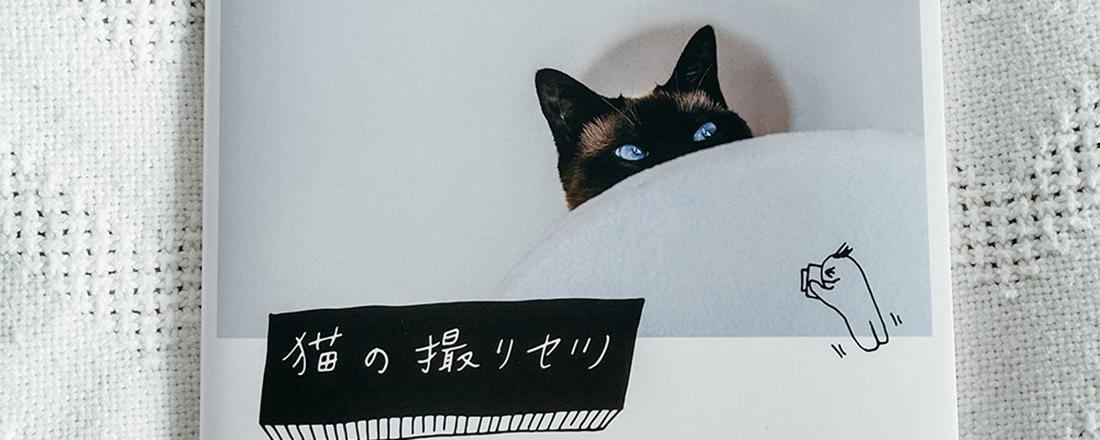 『猫の撮リセツ』の誕生秘話。