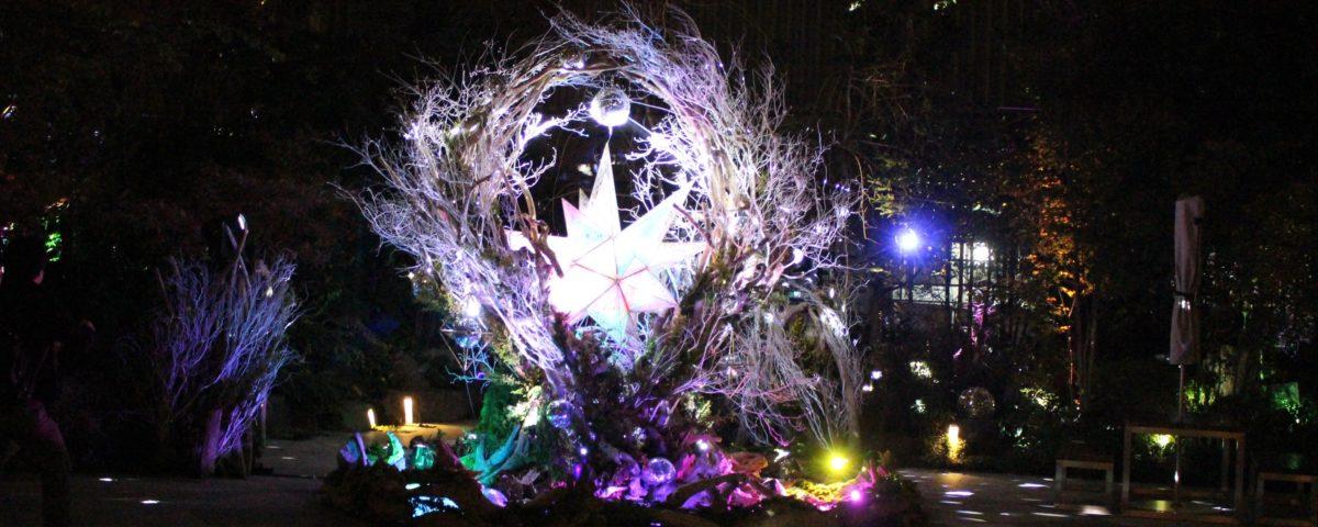 体験型イルミネーションアート「NIHONBASHI – 星降ル森」が日本橋で開催!