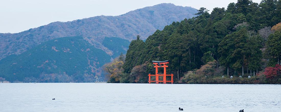 お気に入りのパワースポットが見つかる『幸せをよぶ、神社とお寺。』特集、発売。
