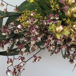 種類豊富な、蘭の魅力を引き出そう