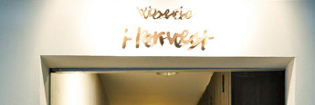 VINERIA HARVEST
