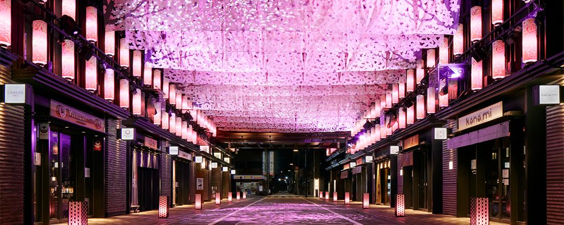 3/16~4/15まで!江戸情緒溢れる『日本橋 桜フェスティバル』開催