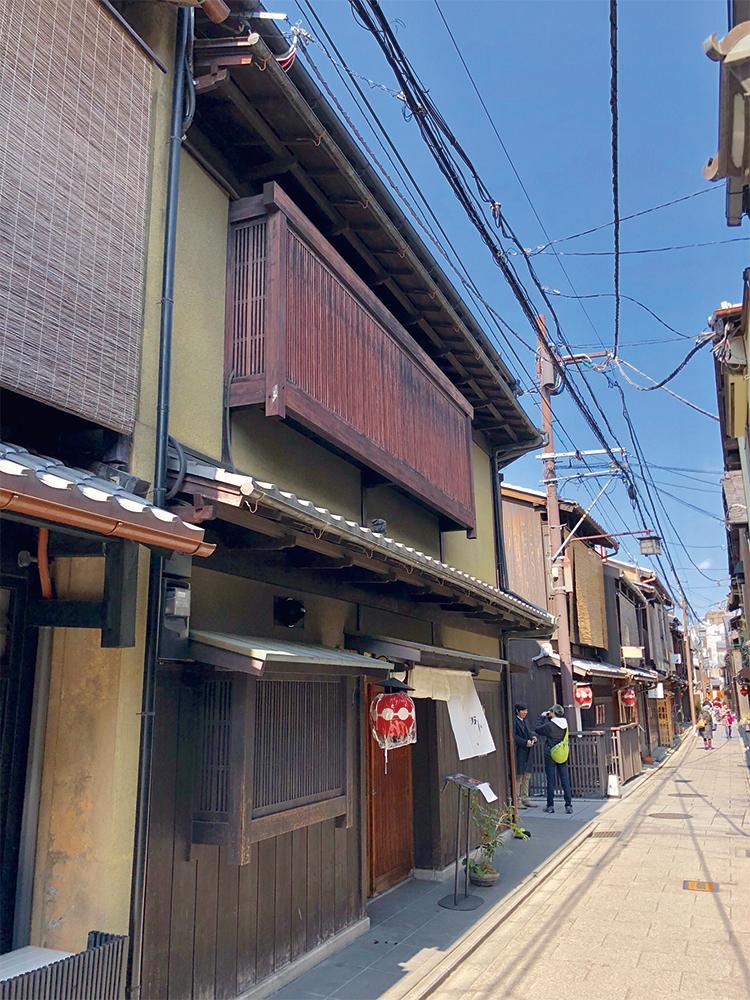 IMG_2011.jpegatari
