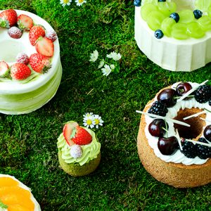 n_Andaz-Tokyo-Pastry-Shop-Early-Summer-2018-Chiffon-Tea-Cake-Group