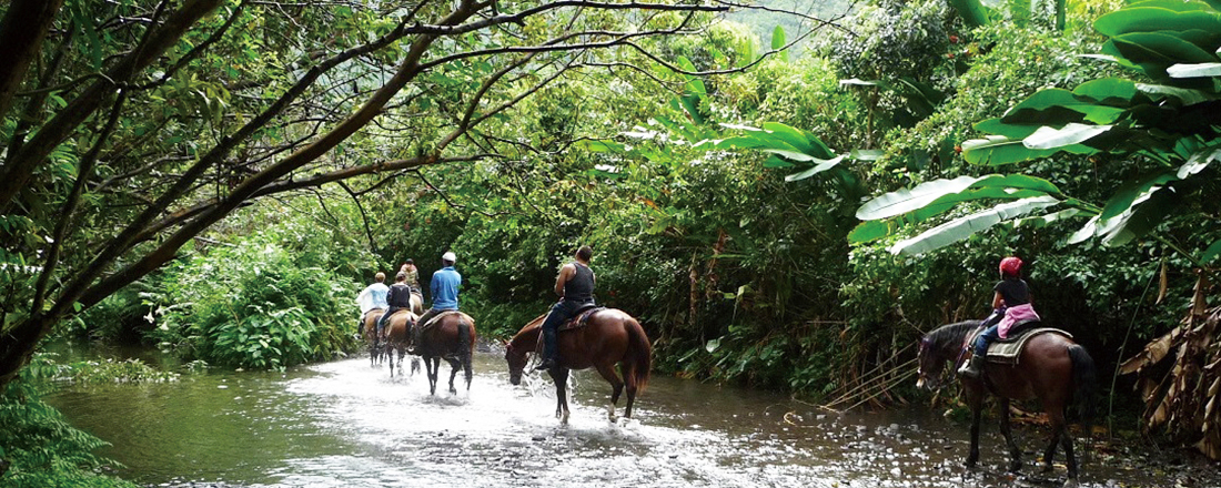 大自然が息づく「ハワイ島」ならではのおすすめ観光&ツアーとは?