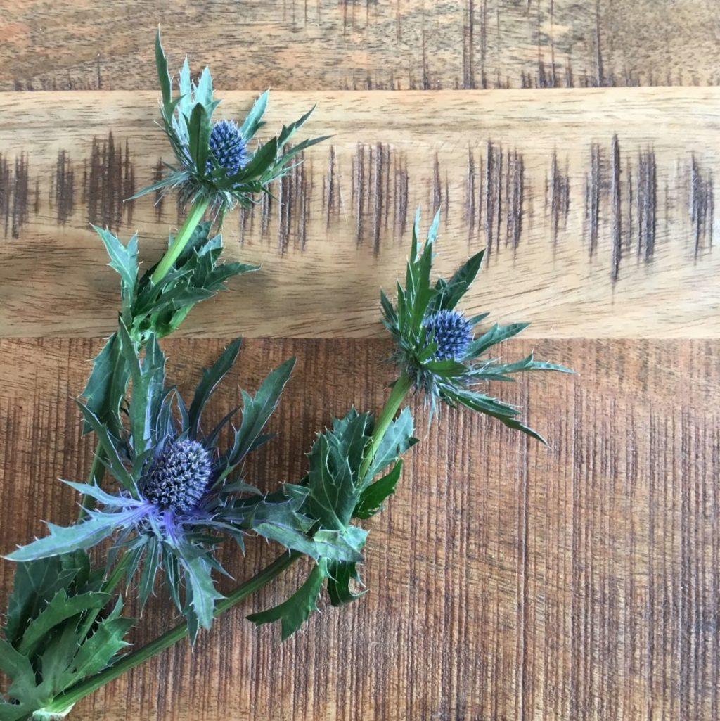 ブルーの花