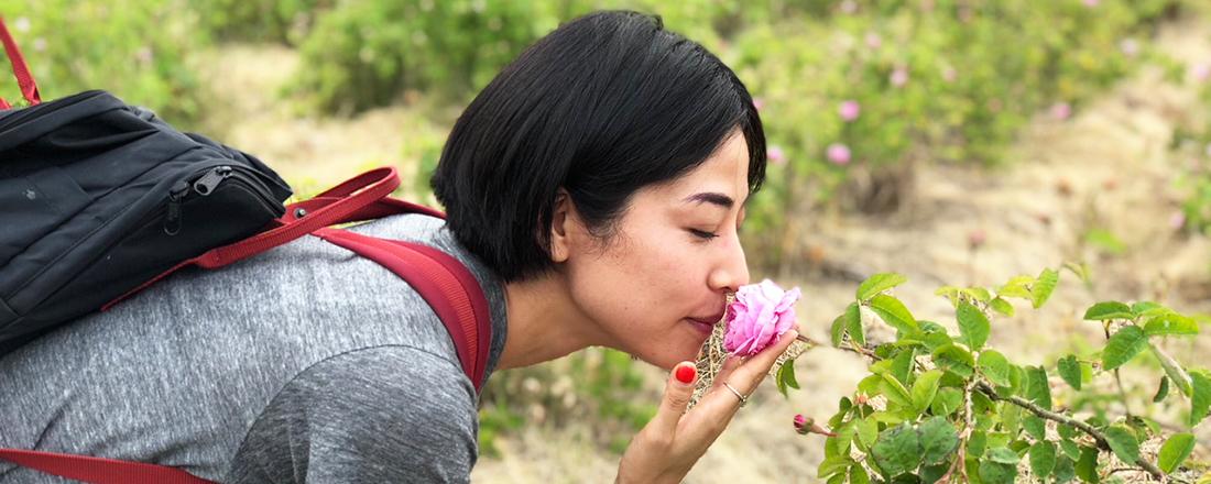 今が旬!バラの名産地・滋賀の新しいバラ園の楽しみ方を体験!