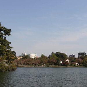 ふたりの距離がグッと近づく!ロマンス気分でデートを楽しめる都内の公園6選