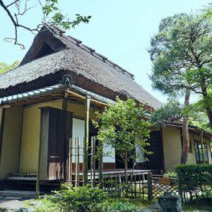 鎌倉〈一条恵観山荘〉ってどんな場所?園内にある〈かふぇ楊梅亭〉も要チェック!