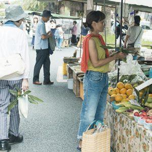 高知へ旅行するなら週末市場へ。料理家・有元くるみさんに教わる。生産者から直接購入する魅力とは?