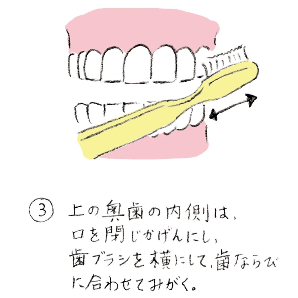 dental_brushing03_u