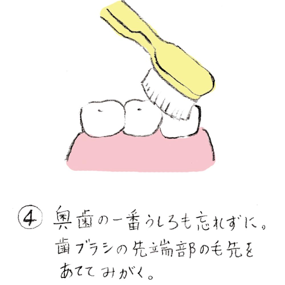 dental_brushing04_u