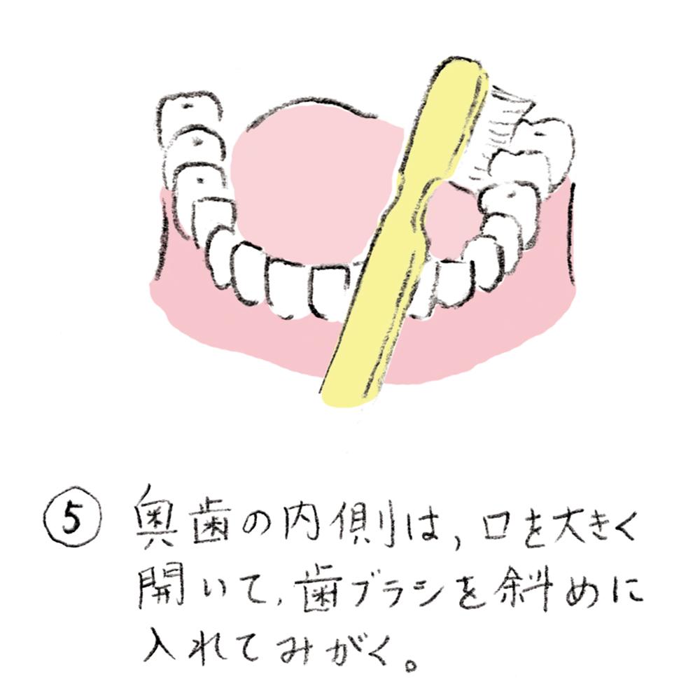 dental_brushing05_u