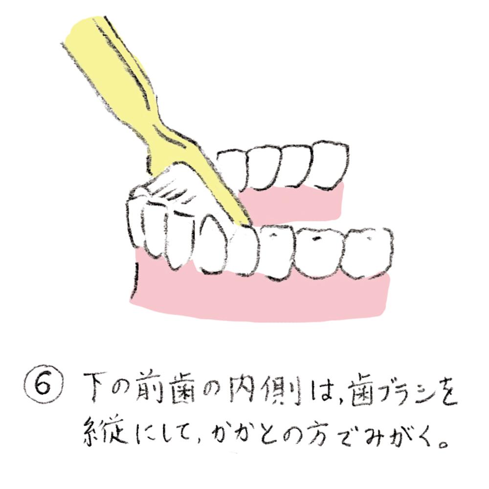 dental_brushing06_u