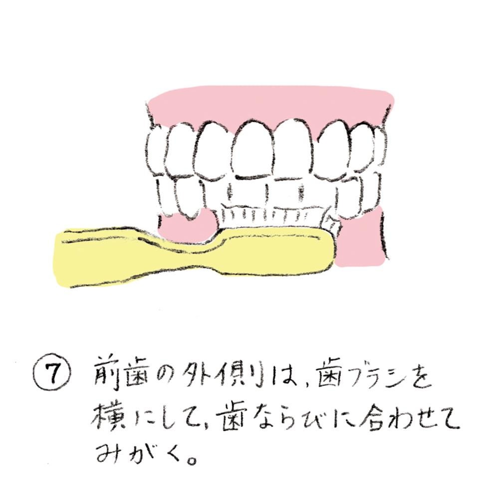 dental_brushing07_u