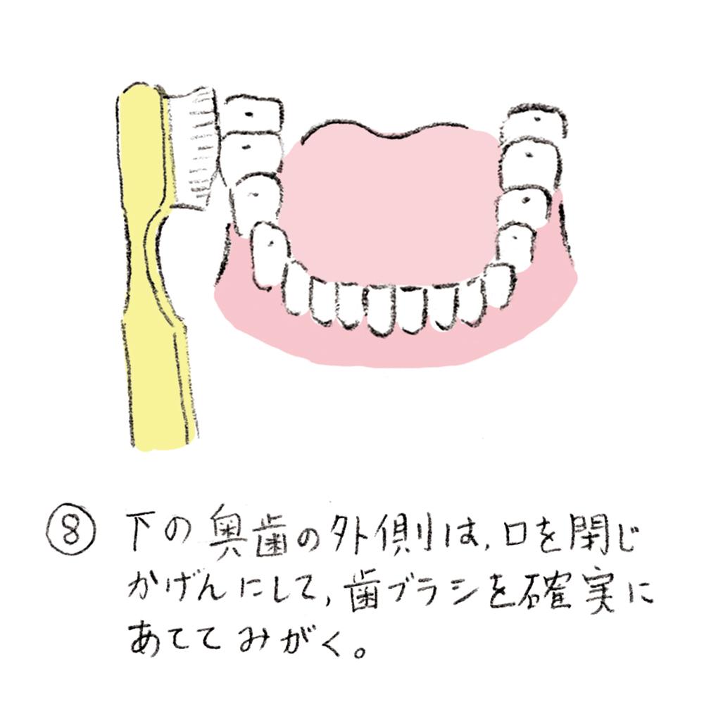 dental_brushing08_u
