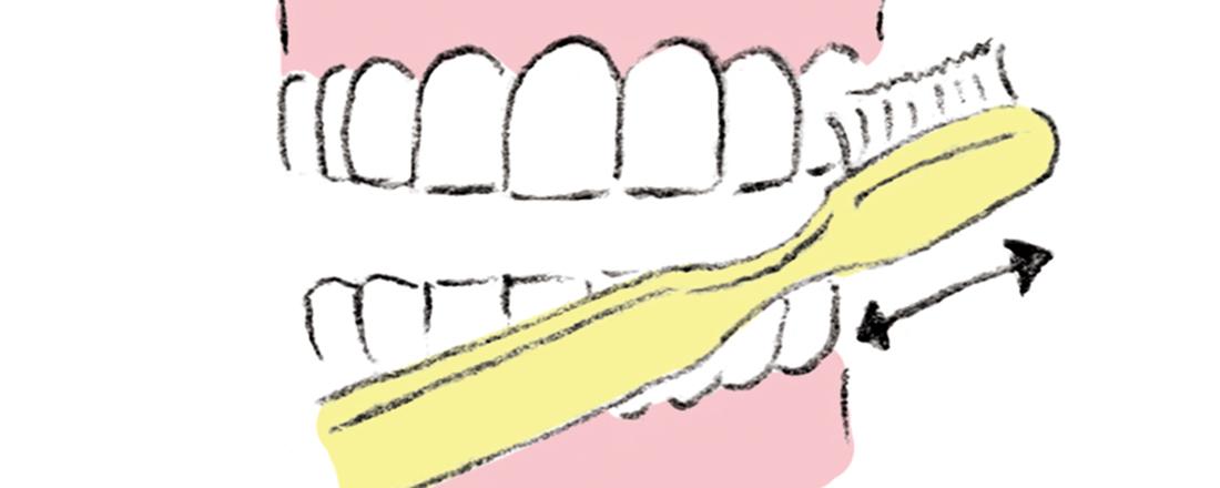 基本は歯磨き!正しいブラッシング方法・デンタルフロスの使い方とは?
