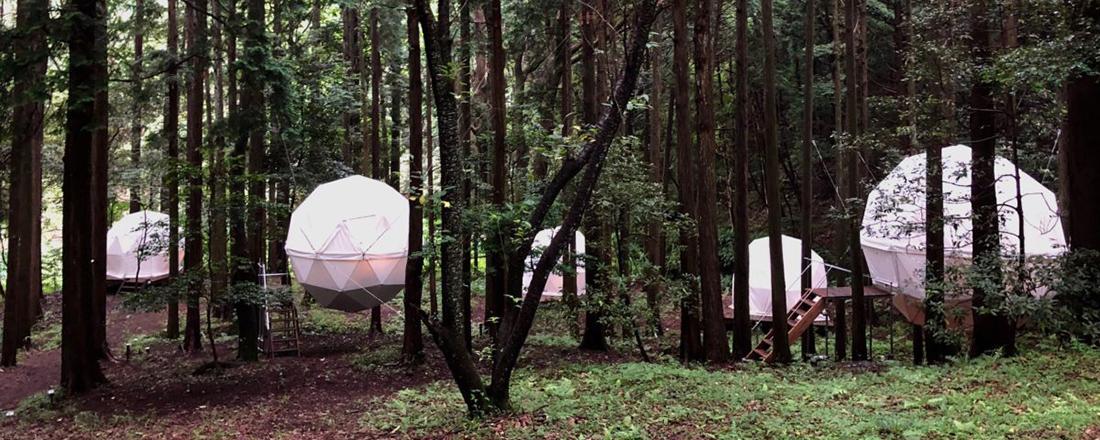森に浮かぶ球体と地元のごはんを〈inn the park〉で。
