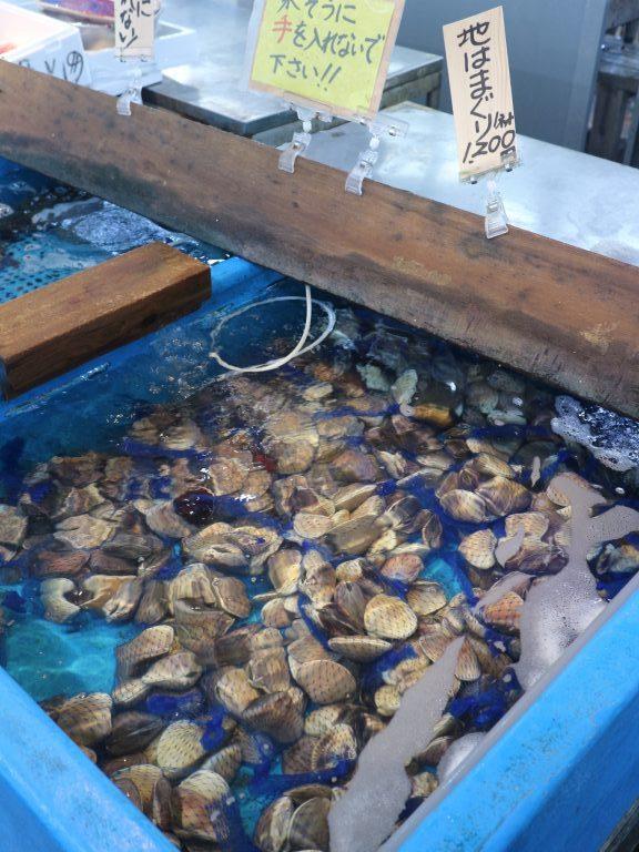 魚介はもちろん野菜売り場のチェックも忘れずに!