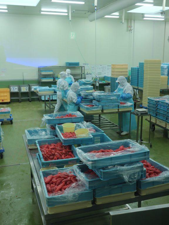 大洗工場では1日5トン(!)製造することもあるそう。