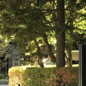 週末旅におすすめ!憧れのリゾート地・軽井沢に、スタイリッシュなホテル〈KYUKARUIZAWA KIKYO, Curio Collection by Hilton〉が誕生。~後編~