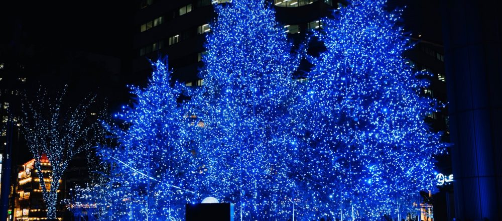今年開業の〈東京ミッドタウン日比谷〉で、高さ約8mのクリスマスツリーが点灯。