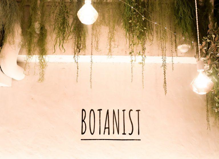 明治神宮前 〈BOTANIST cafe〉