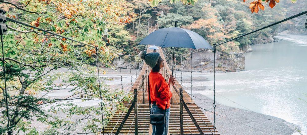 #夢の吊橋 #ドキドキ