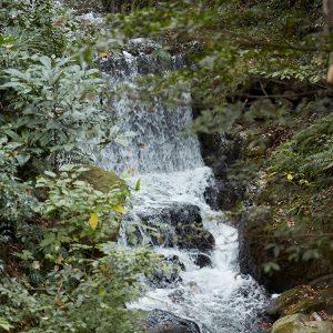 境内の脇を流れる糸川のせせらぎも耳に心地いい。