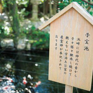 清らかな水に鯉が泳ぐ子宝池は境内を入って左手に。