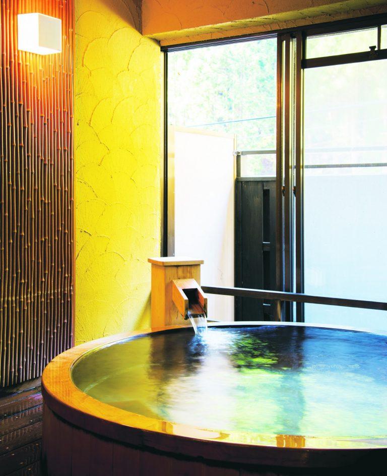 梅ヶ島温泉〈湯の島館〉