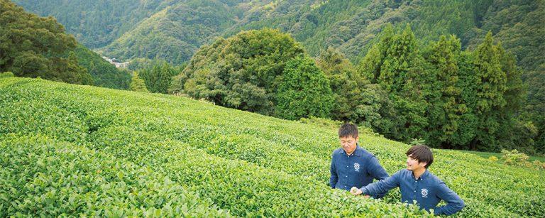 蔵前・日本茶専門店〈NAKAMURA TEA LIFE STORE〉のオーガニック茶で癒しの時間を過ごす。