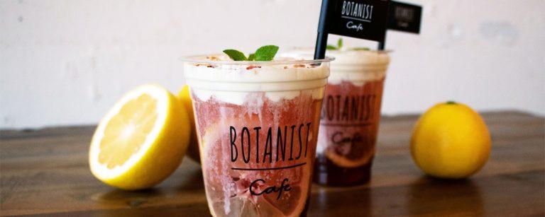 〈BOTANIST cafe〉から期間限定「日向夏チーズティー」が登場!雑誌Hanakoの読者コミュニティーと共同開発。