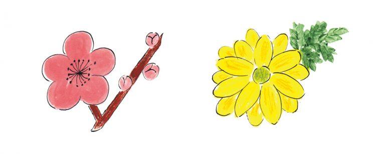 鎌倉観光の完全保存版。神社・お寺の春夏秋冬お花見カレンダー。