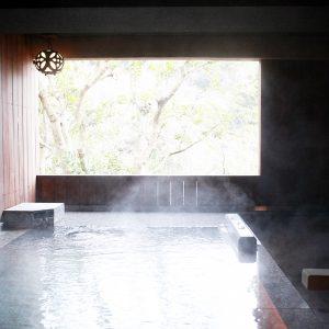 新設された客室「あおい」の露天風呂。静かな山と林に囲まれたロケーション。
