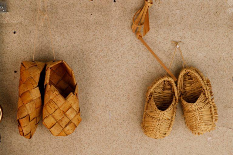 国立 カゴアミドリ
