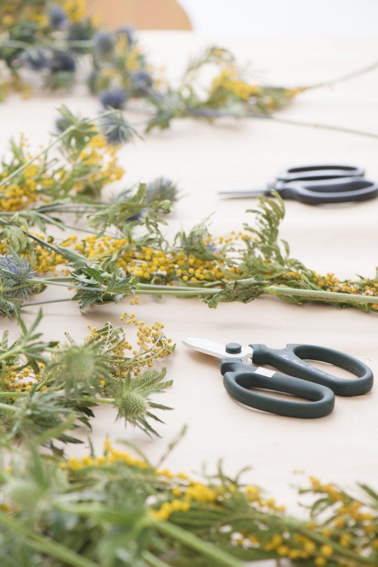 """イエローの小さな花が可愛らしいミモザ。""""女性の自由""""の象徴でもあり、ヨーロッパでは国際女性デーに贈られるのだとか。"""