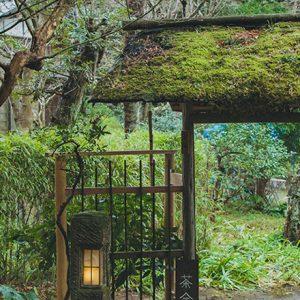 完全予約制の穴場!ひっそり佇む古民家茶室〈北鎌倉 宝庵〉で、心身共にデトックス。