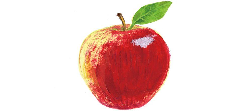 人気フルーツ27種の旬と効能が分かる!【完全保存版】フルーツカレンダーを公開。