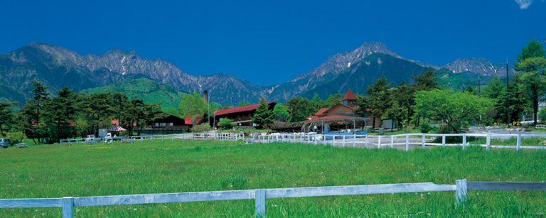 いま行きたい「はとバス」ツアー4選!東京観光や日帰り旅行を気軽に楽しめる。