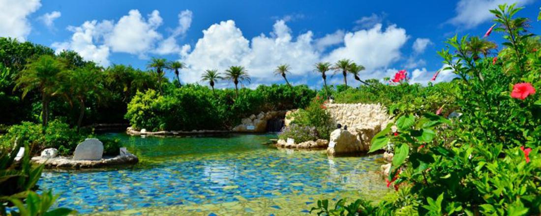 沖縄旅行で泊まりたいおしゃれホテル・宿。絶景ジャングルプールや映え朝食が人気!