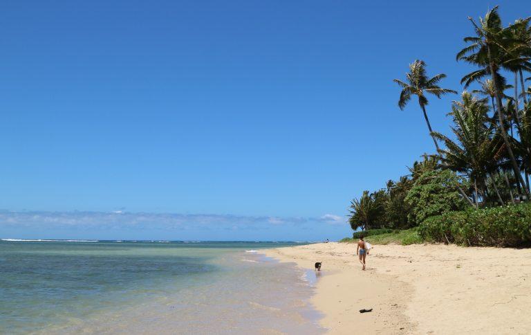 """インドア派のハワイ旅におすすめの海沿い散歩、""""ビーチトレイル""""2選。【ハワイ通信Vol.5】"""
