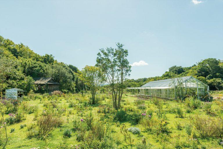 (公式画像)くらしの植物園