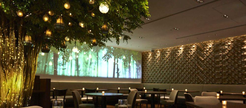 〈京王プラザホテル〉とNAKEDがコラボ。『キャンドルビアナイト』で幻想的なディナーを!