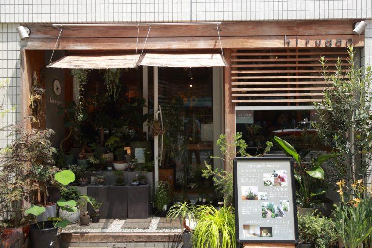 京都 hirugao